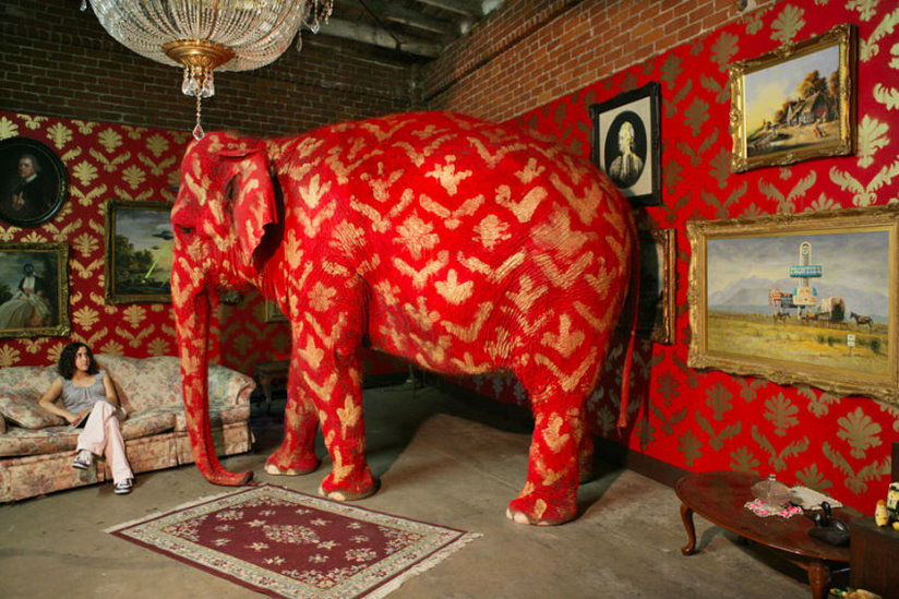 Elephant in room